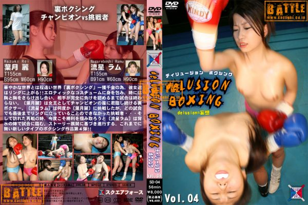 SD-04 Delusion Boxing Vol.04 Hazuki Rei, Nagareboshi Ramu