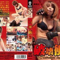 SWH-010 ~ Destrution Impulse ~ Impulse Destruction Imai Honoka, Niigaki Sakura